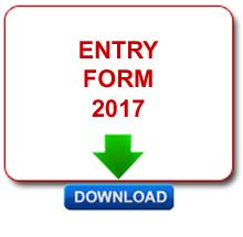 pdf3-2017